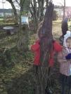 outdoor explorers 1