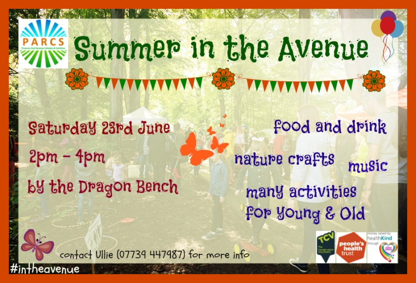 Summer in the Avenue 2018